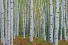 "Birch Trees V,  Cyril Seme,  36""x40"""