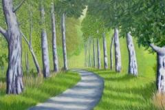 Steveston Birch Trail,  Cyril Seme,  Acrylic on Canvas,  4'x4'